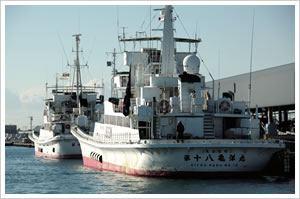 遠洋カツオ一本釣り漁