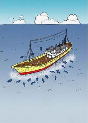 遠洋カツオ一本釣り漁イラスト