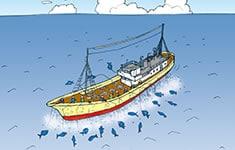 漁業の紹介イラスト