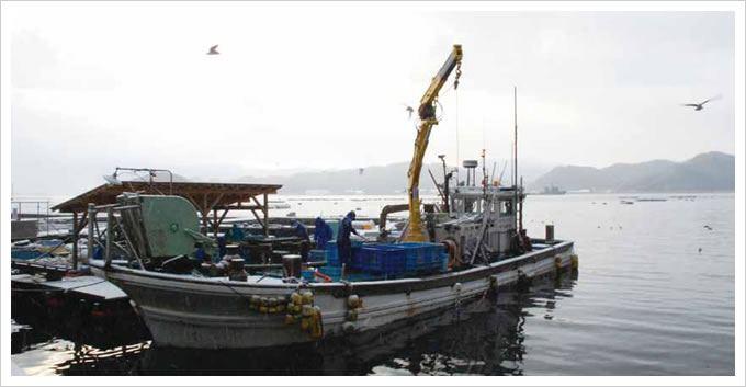定置網漁の船