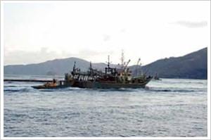 大中型まき網漁