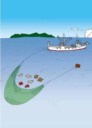 沖合底曳き網漁 | 漁師.jp:全国漁業就業者確保育成センター