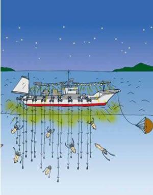 沖合イカ釣り漁イラスト
