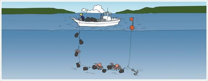 タコつぼ漁イラスト